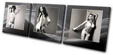Fashion Sexy Girls Underwear TREBLE DOEK WALL ART foto afdrukken