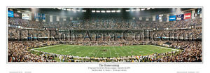 New Orleans Saints   Professionally Framed Panorama Poster