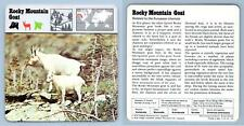 Rocky Mountain Goat - Mammals - 1970's Rencontre Safari Wildlife Card