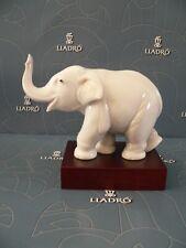Lladro Lucky Elephant 8036 * Mint In Box