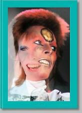 Mick Rock: The Rise of David Bowie, 1972-1973 by Taschen GmbH (Hardback, 2016)