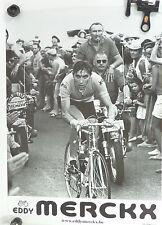Eddy Merckx Poster 1969 Tour de france Yellow Jersey Vintage Bike NOS