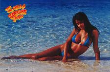 LOT OF 2 POSTERS  : MONICA SOARES - MISS HAWAIIAN TROPIC 1994   #2500    LP44 O