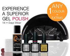 Professional Gel Nail Polish STARTER Kit w/Lamp-ANY 1 Colour