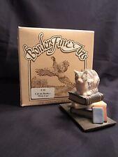 Border Fine Arts cat figurine C10 CAT ON BOOKS WISE CAT Scotland MIB