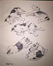 Diana Thorne Vintage Dog Art Print 1941 Wire Haired Fox Terrier Study Scarce