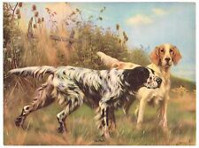 """Vintage Calendar Print 1930S On Point Pointers Hunting Dogs 8X6"""" Original Litho"""