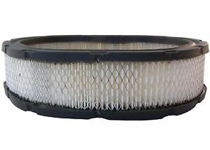 Air Filter-Durapack - Pack of 06 ACDelco A1113CF