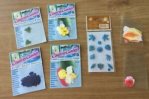NEW Country Garden Flowers and Leaves Paper Shapes for Card making