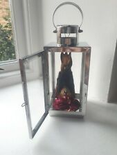 More details for real hipposiderous diadema , leaf-nosed bat , taxidermy in chrome lantern