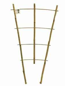 Natural Color Bamboo Trellis 24 inches Tall