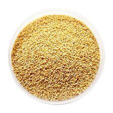 Graines de millet des oiseaux/Kodri - 1,5 kg