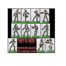 Shadowforge Female Wicked Elf Team x 11 Players