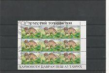 Tadzikistan sehr schöner Kleinbogen Saurier