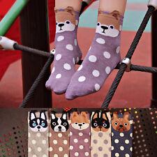 100% Cotton Candy Color Cat Footprints Socks Boy Girl Women's Middle Tube Sock