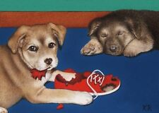 puppies dogs shoe animals aceo art print limited edition pets by KR