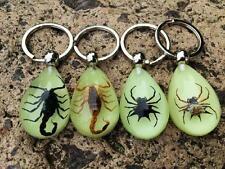 16PCS Noble Spider Scorpion Glow Style Light NIght Xmas Gifts key-chains