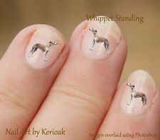 Whippet Standing,  Set of 24 Nail Art Stickers Decals fingernail