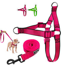 Durable Nylon Front Lead Dog Harness Lead Adjustable for Small Medium Large Dogs
