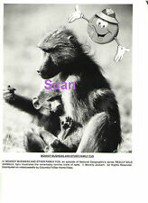 MONKEY BUSINESS & OTHER FAMILY FUN NATIONAL GEOGRAPHIC REALLY WILD ANIMALS PHOTO