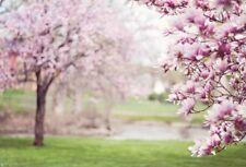 7x5ft Background Photo Backdrop Studio Props Scene Floral Spring Wedding Vinyl
