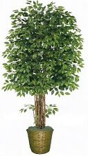 Artificial 8' Ficus Tree Plant Bush Basket Arrangement Topiary Flower Palm Ivy