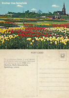 1970's GREETINGS FROM SPRINGFIELD SPALDING LINCOLNSHIRE UNUSED COLOUR POSTCARD