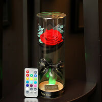 Para Ella Preserved Fresh Rose Flower with Fallen Petals in Glass Dome on a Wood