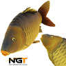 NGT CARP FISHING PILLOW SOFT TOY GREAT CARP FISHING GIFT 70CM , BED CHAIR BIVVY