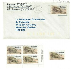 TURTLE small collection 4 items, FDC, commercial cover, plate block and single