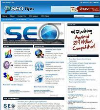 Search Engine Optimization Seo Turnkey Website Affiliate Income