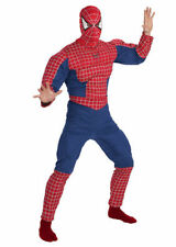 Polyester Complete Outfit Superhero Costumes for Men