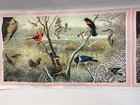 "1979 National Wildlife Federation Birds Scarf Beautiful 43"" x 12.5"" Lady's Gift"