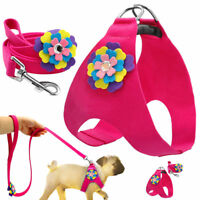 Elegant Flower Studded Dog Harness and Leash Soft Suede for Small Medium Dog Pet