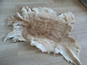 New Beautiful Real  Falow Deer Skin/Hide/Rug (1)