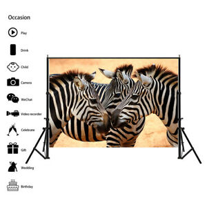 Wildlife Zebra Animal Photography Background Wall Backdrop Prints Decor AA1