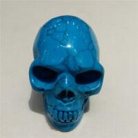 Blue Turquoise Crystal  Skull Crystal Healing Display