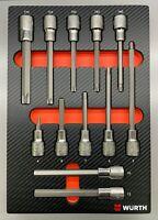 Würth Zebra Stechschlüsseleinsatz Torx TX Sechskant 1/2 Zoll Schaumeinlage 12tlg