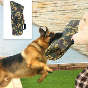 Polizei Hund Beißärmel Schutzarm Hundesport Schutzdienst Hundeausbildung Pitbull