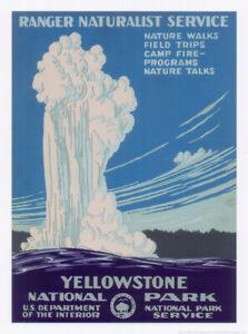Plakat -  Yellow Stone National Park / Nr. 77