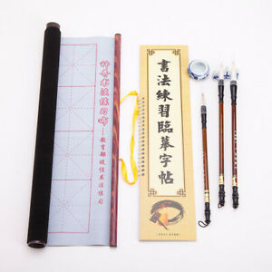 Chinese Japanese Magic Rewritable Calligraphy Water Writing Fabric Cloth Brus...