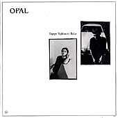 Happy Nightmare Baby by Opal (CD, May-1993, SST)