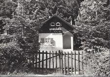 VALLE DI SELLA - LA GENZIANELLA - V1964