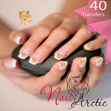40 x Nail Art Water Transfers Stickers Wraps Decals Pomeranian
