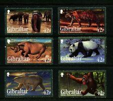 Endangered Animals 6 mnh stamps 2011 Gibraltar #1284-9 Rhino Elephant Panda Bear
