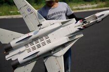 Freewing Dual 80mm rc airplane jet model F14 Tomcat with Variable Sweep Wing PNP