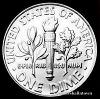 1969 P Roosevelt Uncirculated Dime ~ Raw Coin from Bank Roll