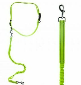 HIGH VISIBILITY DOG LEAD Hands Free 2m Running Jogging Walking Adjustable Leash