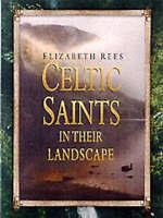 Celtic Saints in Their Landscape by Elizabeth Rees (Hardback, 2001)