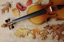 Beautiful Antique violon toile photo #1 SUPERBE PHOTOGRAPHIE A1 Toile